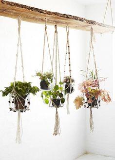 plafond jardinières