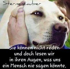 Sehr wahr!!!