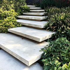 the steps up to my mothers house today. Landscape Architecture, Landscape Design, Garden Design, To My Mother, Stepping Stones, Stairs, Terraces, Wood, Outdoor Decor