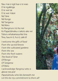 Maori Songs, Maori Symbols, Maori Designs, New Zealand South Island, School Resources, Classroom Resources, Maori Art, Vintage Art Prints, Leadership
