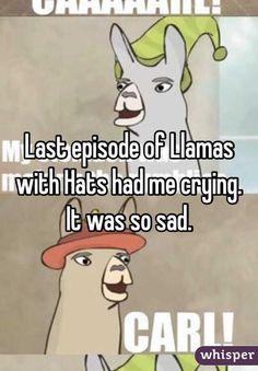 Llamas With Hats Humor Pinterest Random Humor And Stuffing - Llamas with hats cruise ship