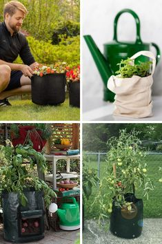Taking into account the various types of plants, spatial needs, and manufacturing qualities desired for a good grow bag, these are the best of the best available for whatever kind of growing you may have in mind. #backyardboss #growbags #bestgrowbags #veggiegardening #gardening Garden Vegetable Recipes, Grow Bags, Types Of Plants, Grow Your Own, Farmers Market, Backyard, Gardening, Canning, Vegetables