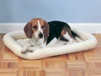 Different Types of Dog Crate Mats: Which one is Perfect for Your Dog?