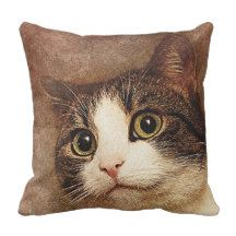 A common cat throw pillow