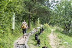 Barfusswanderweg Schweiz - Sentier Pieds Nus Rebeuvelier Railroad Tracks, Barefoot, Pathways, Hiking, Ideas, Train Tracks
