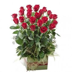 """Give these two #dozen of #red #roses to your #special someone to convey a simple yet powerful message: """"I Love You""""   Send only the freshest flowers for your loved ones!  The #bestgifts for #lovedones are #freshflowers"""