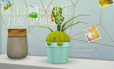 """llenies: """" Here are the gifts I whipped up for the CC exchange - here you go, @simnels! 3 small items, but I quite like them! Three concrete pots (medium is shown) in concrete texture and 4 different wood shades. The polaroids """"on a thread"""" have 2..."""