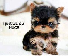 I just want a hug
