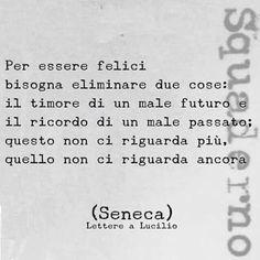 Seneca aveva centrato un obiettivo