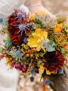 Vibrant Fall Bouquet - Thistle, berries and yarrow