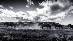 Into the wild by sebastiankoziel Iceland highlands