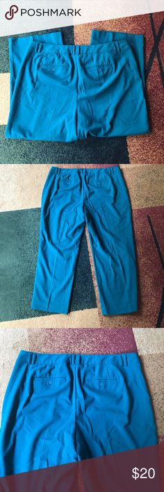 """Lane Bryant pants plus size 24 shirt NWOT New without tag. 63% polyester 34% rayon 3% spandex. Inseam 28"""".   Please check my other listings. Thank you for looking and have a great day! Lane Bryant Pants Trousers"""