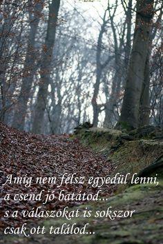 Fotó Best Quotes, Life Quotes, Motivational Quotes, Inspirational Quotes, Picture Quotes, Einstein, Quotations, Wisdom, Signs