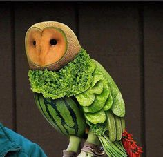 A fruit and veg owl! That's right, an owl made entirely of fruit and vegetables! creative food culinary Plus L'art Du Fruit, Fruit Art, Fruit Salad, Fresh Fruit, Eat Fruit, Melon Salad, Fruit Cakes, Fruit Sculptures, Food Sculpture