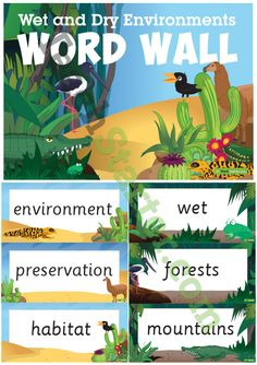Wet and Dry Environments Word Wall Vocabulary Teaching Resource Vocabulary Word Walls, Vocabulary Cards, Teaching Science, Teaching Resources, Teaching Ideas, Classroom Games, Classroom Ideas, Weather Worksheets, Forest Habitat
