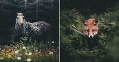 Konsta Punkka is a wildlife photographer from Finland who captures the everyday lives of some of Earth's most skittish forest creatures.