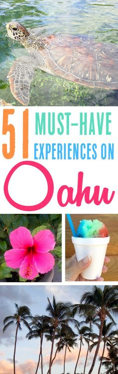 Oahu Hawaii Activities, Secrets and Best Things to Do in Oahu! The Top Hidden Gems and Ultimate Bucket List for your visit + What to Know Before You Go! #bestHawaiiHoneymoontraveltips