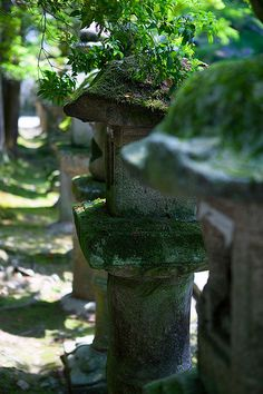 Stone lanterns in Nara, Japan: photo by caseyyee, via Flickr