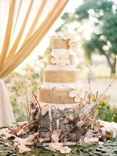 Rustic cake on stump and twig - Rustic - Cakes Photos. Not getting married any time soon, but I love this!