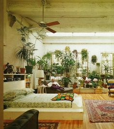 Mid Century Cool! 70's bedroom - plants, rug and platform bed still cool after all of these years!