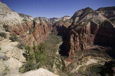 Juni 2008 Ein Ausblick vom Angels Landing im Zion NP Zion Canyon, Grand Canyon, Landing, Angels, Hiking, Nature, Travel, Art, Pictures
