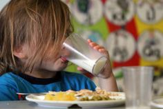 State Plans to Ban Whole Milk For Children - http://www.offthegridnews.com/2014/05/06/state-plans-to-ban-whole-milk-for-children/