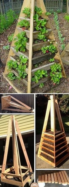 Erdbeeren in Pyramide aus Holz pflanzen. - Pflanzen ideen Erdbeeren in Pyramide aus Holz pflanzen. Erdbeeren in Pyramide aus Holz pflanzen. Small Gardens, Outdoor Gardens, Vertical Gardens, Vertical Planter, Indoor Outdoor, Vertical Garden Diy, Tiered Planter, Indoor Herbs, Raised Gardens