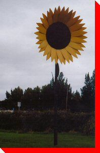 Across Canada, there are hundreds of interesting roadside attractions. This site is dedicated to cataloging our nation's large roadside attractions. Cross Canada Road Trip, Saskatchewan Canada, Canada Eh, Sea To Shining Sea, Roadside Attractions, Heartland, Road Trips, Sunflowers, Worlds Largest