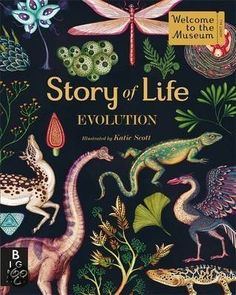 Story of Life: Evolution by Katie Scott. A graphic, fold out guide to evolution. The book will start with the first single-cell organisms and end with modern life forms. Read it as a book or fold it all the way out. Cool Books, New Books, Books To Read, Katie Scott, Evolution, Actes Sud Junior, Homo Habilis, National Geographic, Illustrator