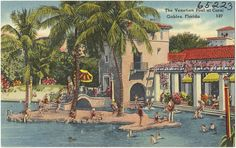 The Venetian Pool Is Drained On A Daily Basis During The