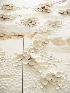 """anca gray 
