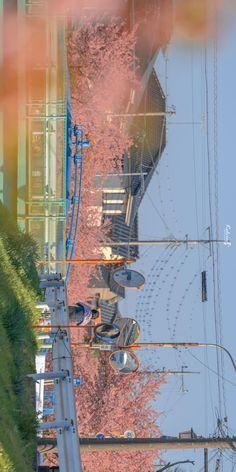 Scenery Background, Flower Background Wallpaper, Anime Scenery Wallpaper, Aesthetic Japan, City Aesthetic, Aesthetic Images, Aesthetic Desktop Wallpaper, Aesthetic Backgrounds, Beautiful Landscape Wallpaper