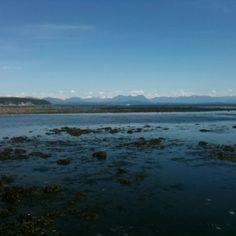 View From The Shoreline In #Campbellriver Free @ Campbell River via Qwiqq.me