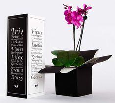 flower package - Google 검색
