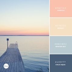 Color Combinations: Apricot Twilight. Try this palette in your next design! #FBC1AE #F7E1C5 #BBCBD2 #495F77