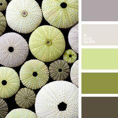 Paleta de colores №2038