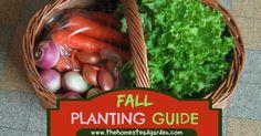Fall planting guide | thehomesteadgarden.com