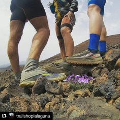 #photo by @trailshoplalaguna  #altra entre #violetas #picos y #volcanes. #altralpoder#seguimosumando #modotransvulcania #trail #trailrunning #mountainrunning #zerolimits #zerodrop #runitfast #posturitastrail #postureomaximo #ultratrail #ultrarun #ultraruner #tenerifelicidad #canariasenforma #quesuerteviviraqui #trailrunningeu #trainingday #traininghard #canarias #tenerife #elputoparaiso #pepoatusitio Tenerife, Instagram Posts, Violets, Volcanoes, Teneriffe