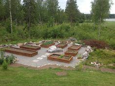 Odlingslådor (raised beds)