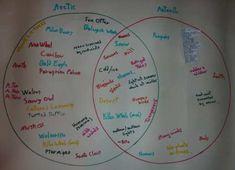 Compare arctic vs antarctic in a venn diagram using these free venn diagram of the arctic and antarctic ccuart Choice Image
