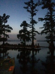 7 Best Reelfoot Lake images in 2015   Blue, Tennessee, Sunset