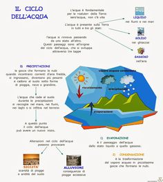 Paradiso delle mappe: Il ciclo dell'acqua Elementary Science, Science For Kids, Water Cycle, Science Projects, Problem Solving, Montessori, Crafts For Kids, Preschool, Web Design