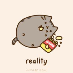 pusheen the cat gifs | New-Year-s-Resolutions-Reality-pusheen-the-cat-27996055-250-250.gif