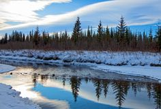 Griffith Woods Park is a primarily natural environment park that lies along the banks of the Elbow River in the southwest part of Calgary. New City, Ponds, Lakes, Beaches, Travel Destinations, Places To Go, Bucket, Hiking, Camping