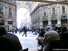 Elefanti a Milano