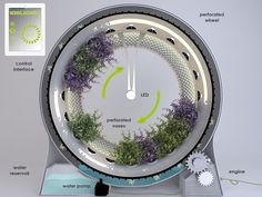 Maplantemonbonheur.fr plante technologie espace maison