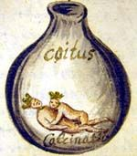 Illustration from the Rosarium   text of MS Ferguson 149:   the Conjunction within a flask