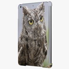 Awesome! This USA, Alaska, Ketchikan. Front close-up of Cover For iPad Air is completely customizable and ready to be personalized or purchased as is. It's a perfect gift for you or your friends.