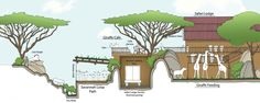 Image result for animal enclosure architectural drawings