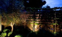 Bodenstrahler unter den Bäumen neben dem Gartenzaun montieren